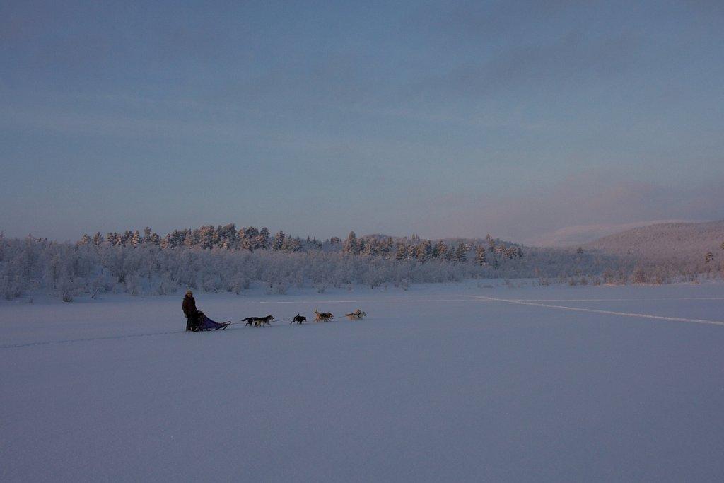 Hundeschlitten Tour in Lappland